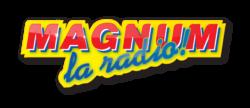 élection Miss Lorraine partenaires MAGNUM LOGO GRAND